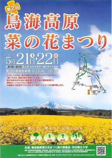 第2回菜の花まつりポスター360.jpg
